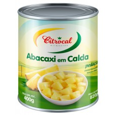 DOCE CALDA ABACAXI CITROCAL PEDACOS 1X400G